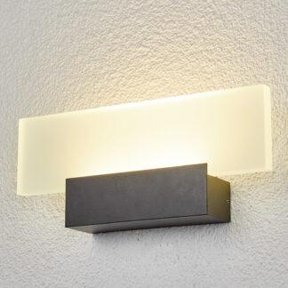 Imponerande LED-utomhusvägglampa Rieke