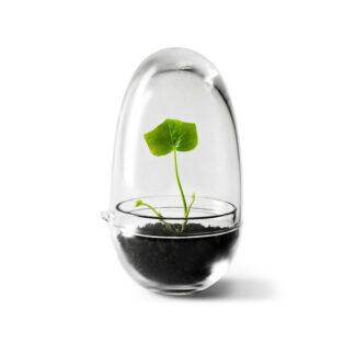 Designtorget Växthus Grow Glas
